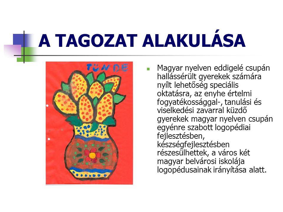 A TAGOZAT ALAKULÁSA  Magyar nyelven eddigelé csupán hallássérült gyerekek számára nyílt lehetőség speciális oktatásra, az enyhe értelmi fogyatékossággal-, tanulási és viselkedési zavarral küzdő gyerekek magyar nyelven csupán egyénre szabott logopédiai fejlesztésben, készségfejlesztésben részesülhettek, a város két magyar belvárosi iskolája logopédusainak irányítása alatt.