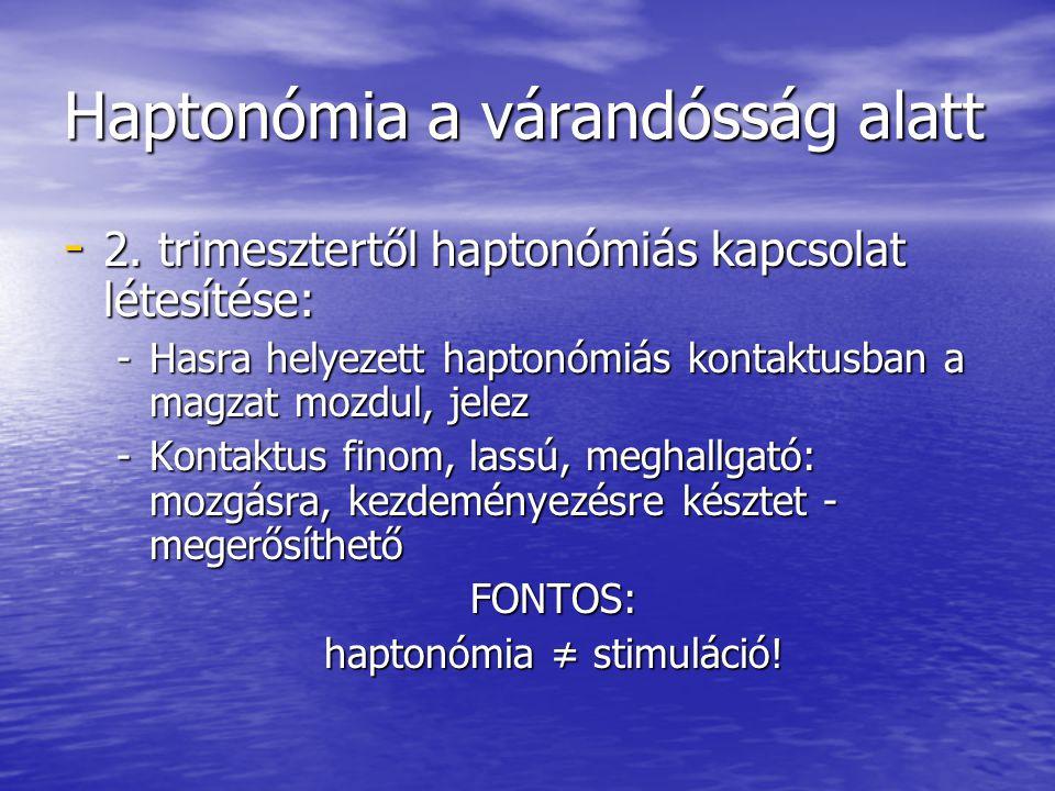 Haptonómia a várandósság alatt - 2. trimesztertől haptonómiás kapcsolat létesítése: -Hasra helyezett haptonómiás kontaktusban a magzat mozdul, jelez -