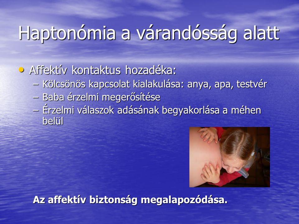 Haptonómia a várandósság alatt • Affektív kontaktus hozadéka: –Kölcsönös kapcsolat kialakulása: anya, apa, testvér –Baba érzelmi megerősítése –Érzelmi