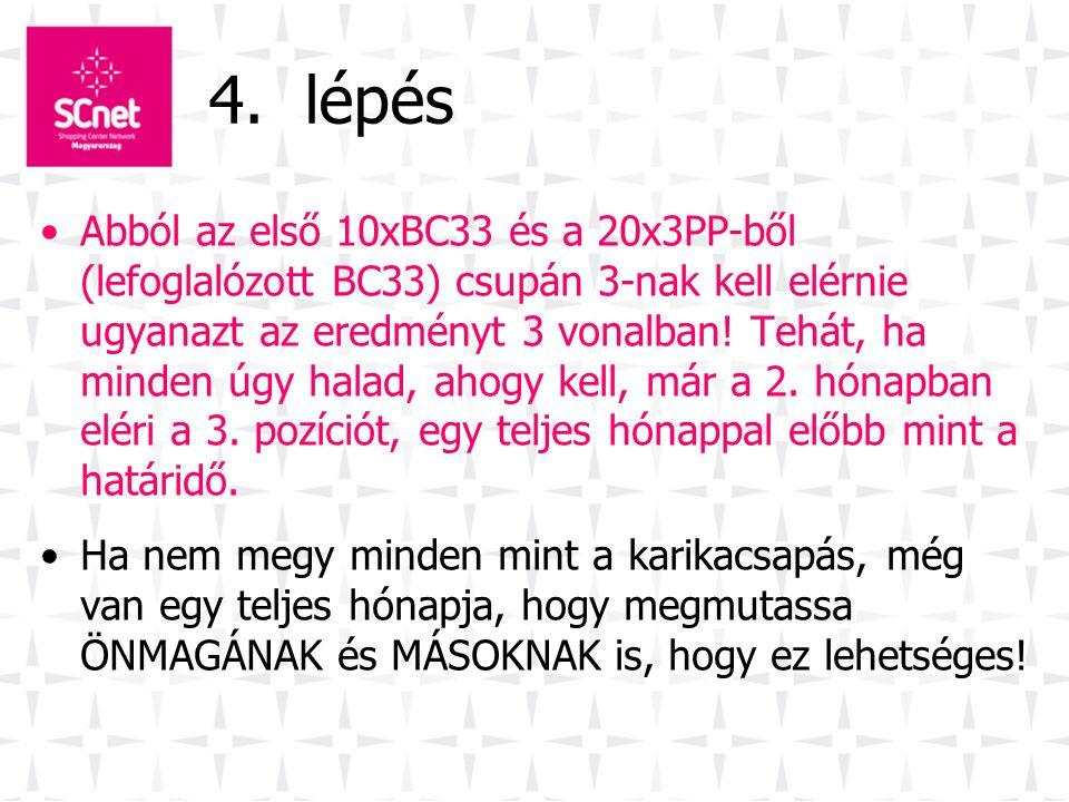 4. lépés •Abból az első 10xBC33 és a 20x3PP-ből (lefoglalózott BC33) csupán 3-nak kell elérnie ugyanazt az eredményt 3 vonalban! Tehát, ha minden úgy