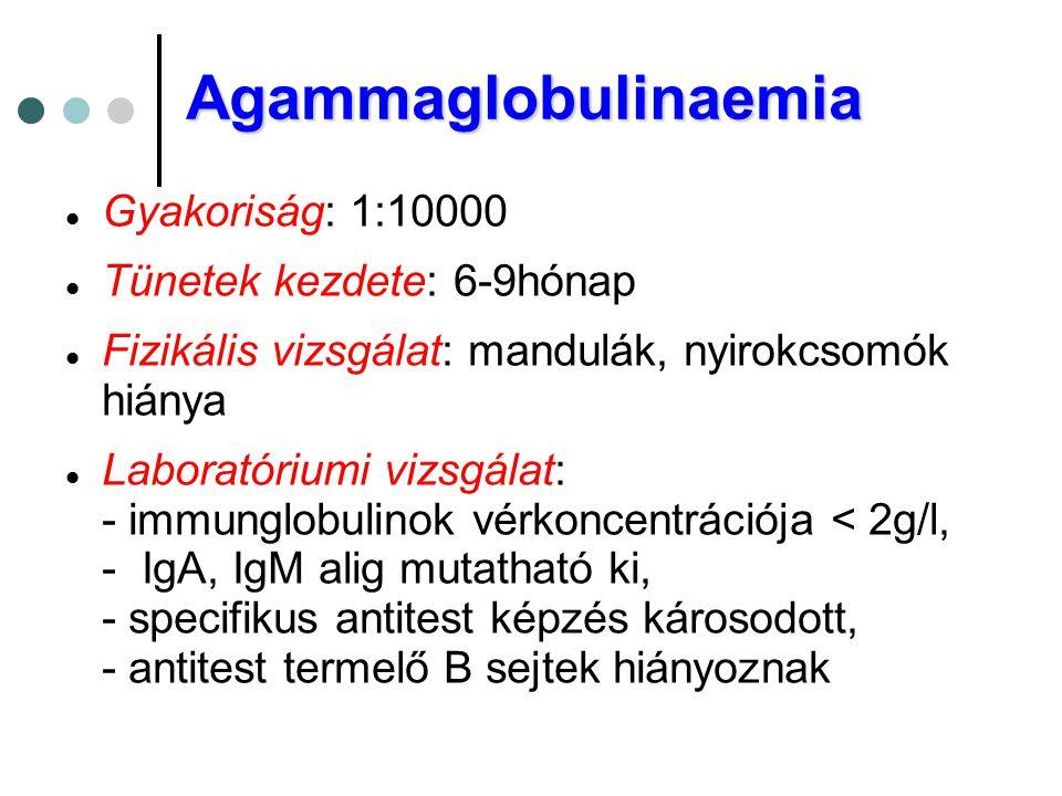 Agammaglobulinaemia  Gyakoriság: 1:10000  Tünetek kezdete: 6-9hónap  Fizikális vizsgálat: mandulák, nyirokcsomók hiánya  Laboratóriumi vizsgálat: