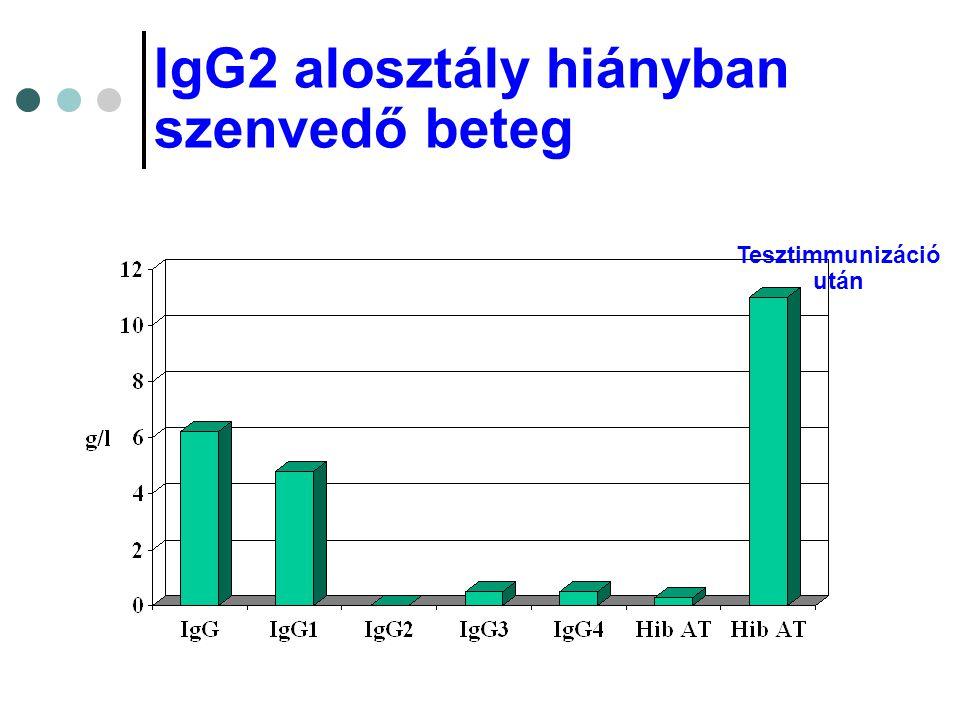 IgG2 alosztály hiányban szenvedő beteg Tesztimmunizáció után