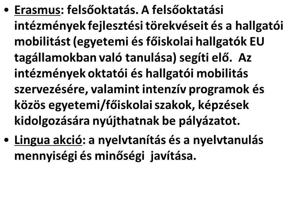 •Erasmus: felsőoktatás. A felsőoktatási intézmények fejlesztési törekvéseit és a hallgatói mobilitást (egyetemi és főiskolai hallgatók EU tagállamokba