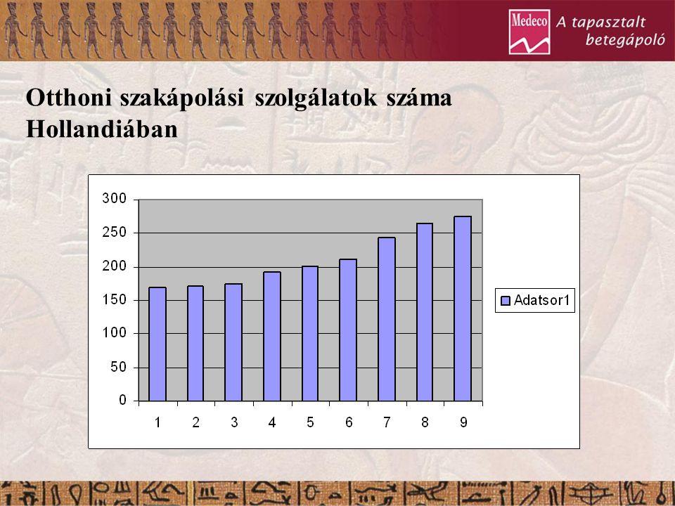 Otthoni szakápolási szolgálatok száma Hollandiában