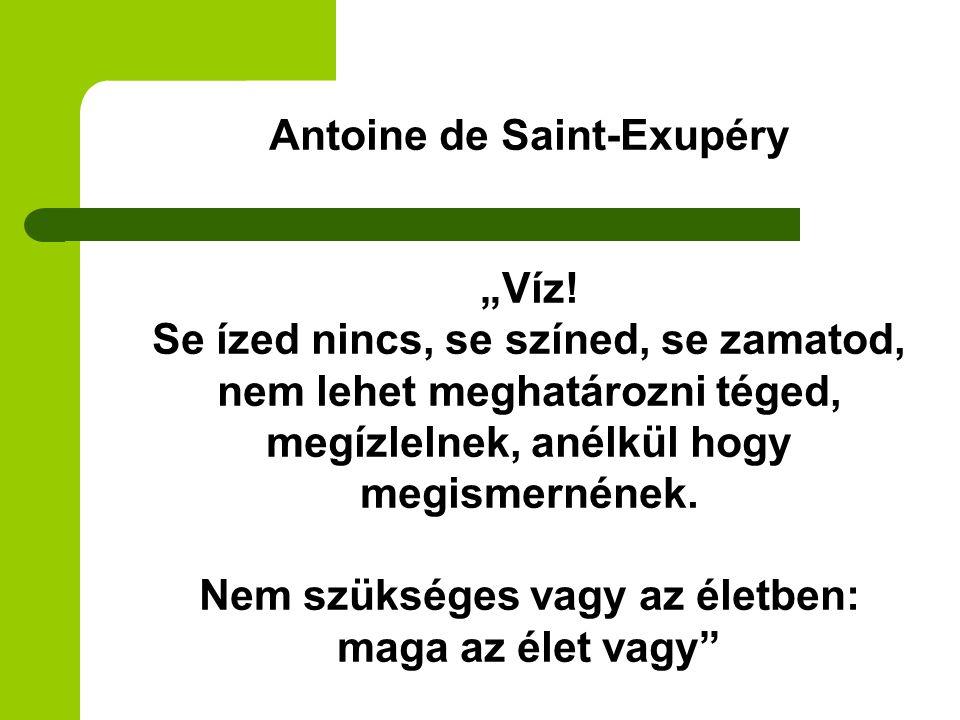 """Antoine de Saint-Exupéry """"Víz! Se ízed nincs, se színed, se zamatod, nem lehet meghatározni téged, megízlelnek, anélkül hogy megismernének. Nem szüksé"""