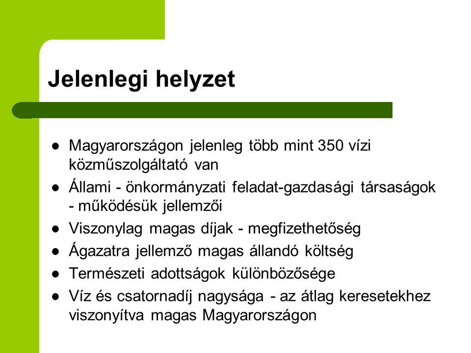 Jelenlegi helyzet  Magyarországon jelenleg több mint 350 vízi közműszolgáltató van  Állami - önkormányzati feladat-gazdasági társaságok - működésük