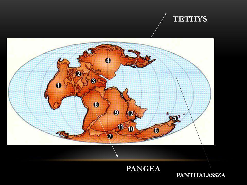 PANGEA PANTHALASSZA TETHYS
