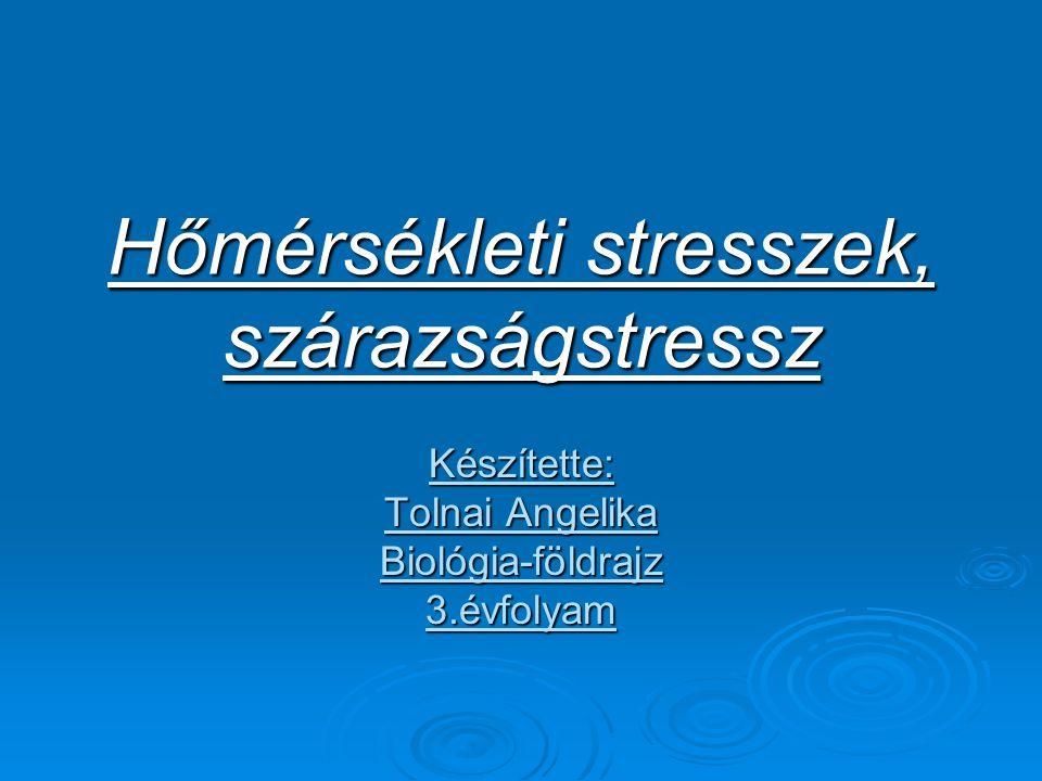 A hőmérsékleti stresszek  Hőség:az optimális alkalmazkodás tartományán túli hőmérséklet.
