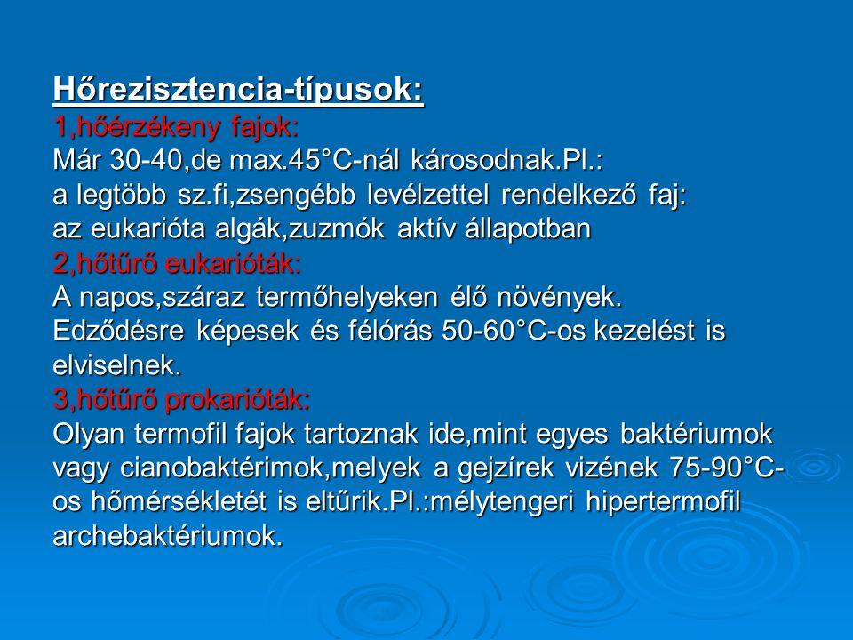Hősokkproteinek=HSP:  Feladata: magas hőmérséklettel szembeni védelem  Molekulatömegük alapján: HSP110, HSP90, HSP70, HSP60 HSP110, HSP90, HSP70, HSP60  HSP-családok izoformái: • 1.