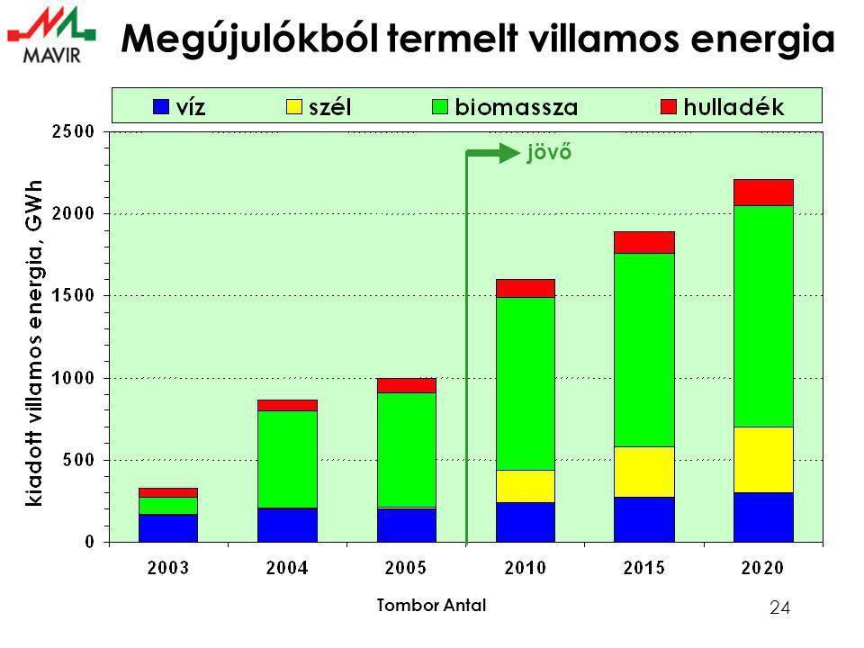 Tombor Antal 24 Megújulókból termelt villamos energia jövő