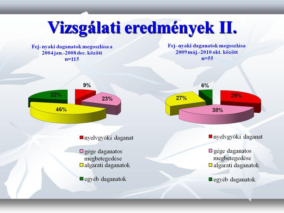 Vizsgálati eredmények II.