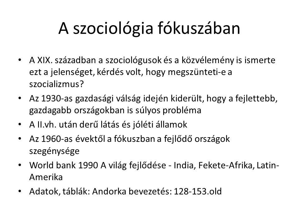 A szociológia fókuszában • A XIX. században a szociológusok és a közvélemény is ismerte ezt a jelenséget, kérdés volt, hogy megszünteti-e a szocializm