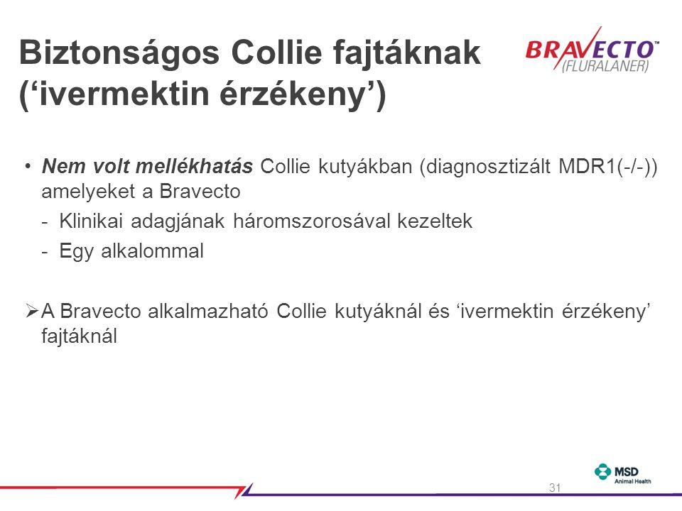 Biztonságos Collie fajtáknak ('ivermektin érzékeny') •Nem volt mellékhatás Collie kutyákban (diagnosztizált MDR1(-/-)) amelyeket a Bravecto -Klinikai adagjának háromszorosával kezeltek -Egy alkalommal  A Bravecto alkalmazható Collie kutyáknál és 'ivermektin érzékeny' fajtáknál 31
