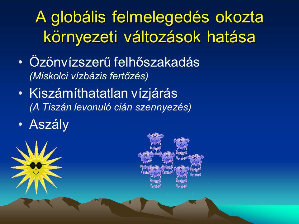 A globális felmelegedés okozta környezeti változások hatása •Özönvízszerű felhőszakadás (Miskolci vízbázis fertőzés) •Kiszámíthatatlan vízjárás (A Tis
