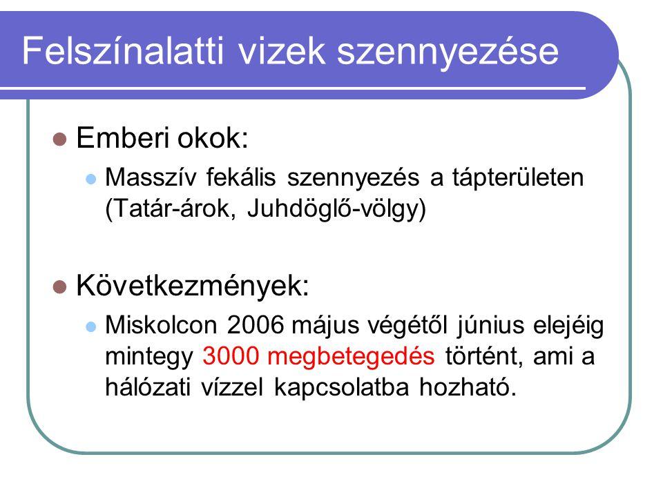 Felszínalatti vizek szennyezése  Emberi okok:  Masszív fekális szennyezés a tápterületen (Tatár-árok, Juhdöglő-völgy)  Következmények:  Miskolcon