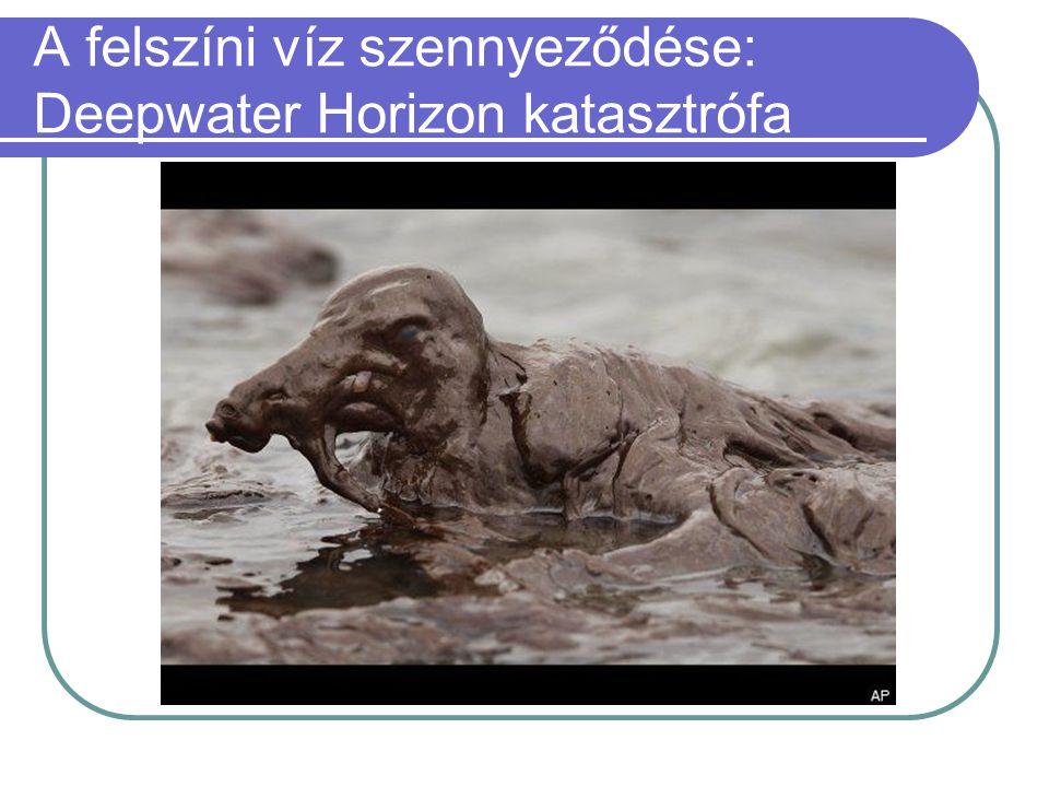 A felszíni víz szennyeződése: Deepwater Horizon katasztrófa  A Deepwater Horizon olajfúró platform április 20-i balesete után szeptember 19-ig minteg