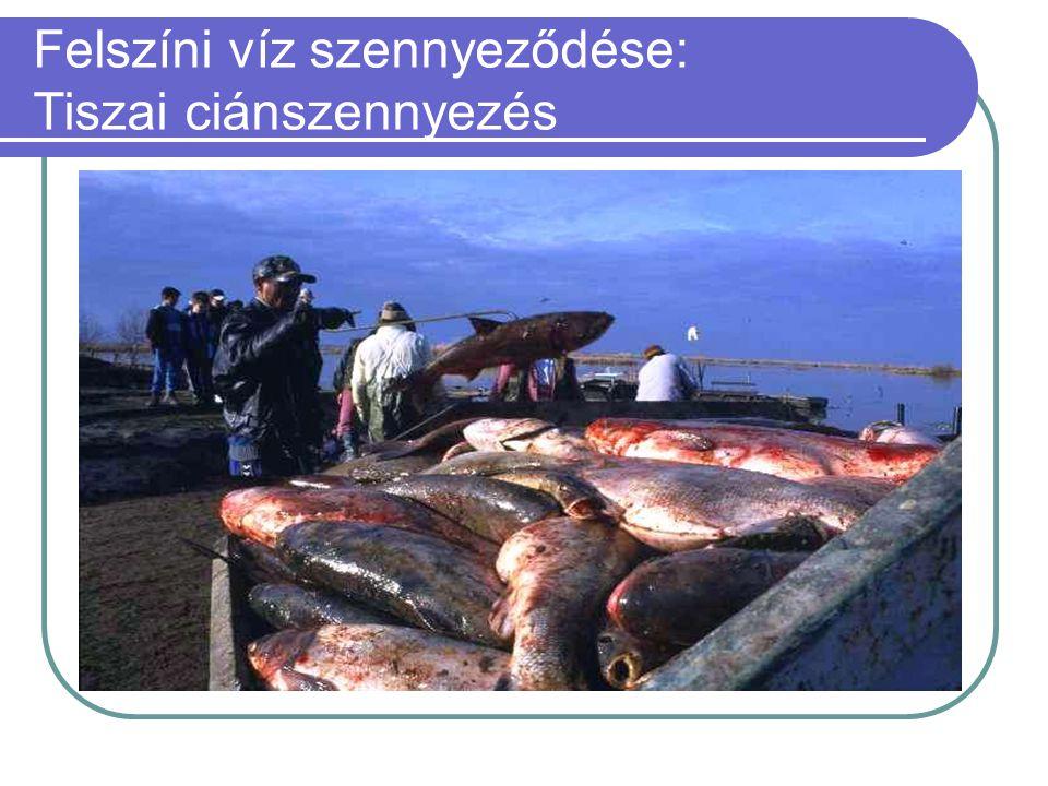 Felszíni víz szennyeződése: Tiszai ciánszennyezés  100 ezer köbméternyi cianid- és nehézfémtartalmú szennyvíz zúdult 2000. január 30-án a nagybányai