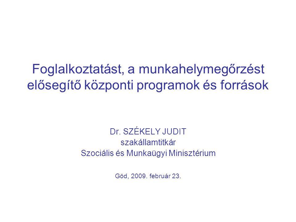 Foglalkoztatást, a munkahelymegőrzést elősegítő központi programok és források Dr. SZÉKELY JUDIT szakállamtitkár Szociális és Munkaügyi Minisztérium G
