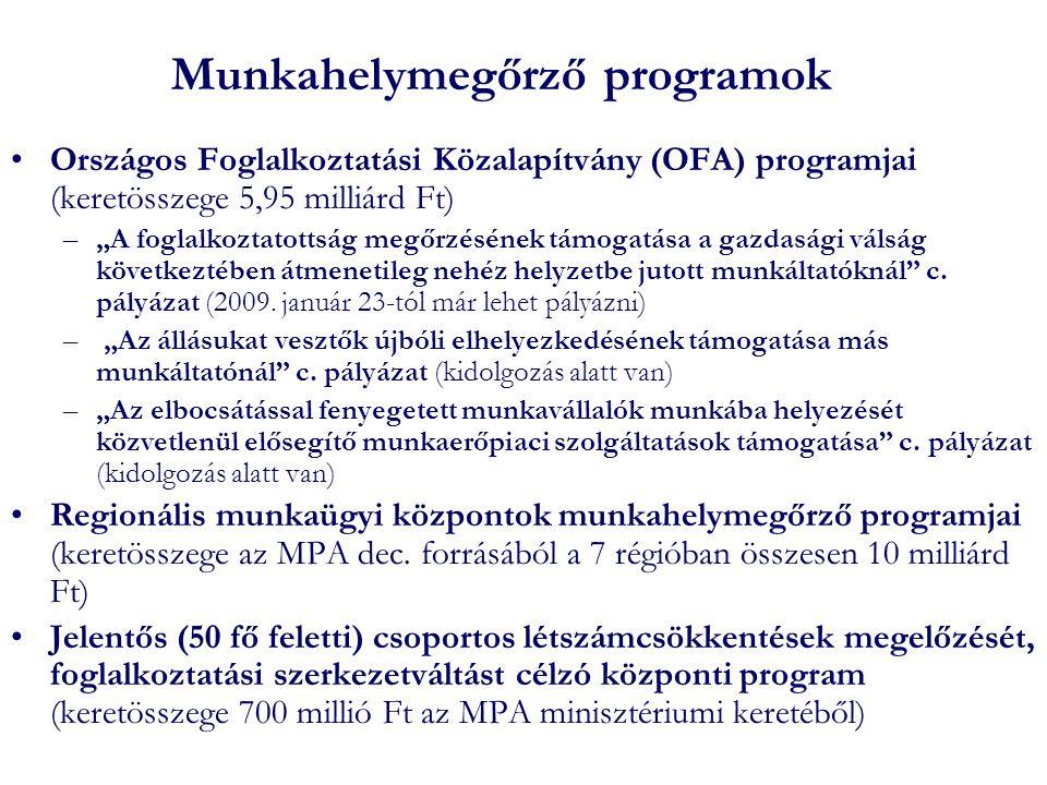 """Munkahelymegőrző programok •Országos Foglalkoztatási Közalapítvány (OFA) programjai (keretösszege 5,95 milliárd Ft) –""""A foglalkoztatottság megőrzésének támogatása a gazdasági válság következtében átmenetileg nehéz helyzetbe jutott munkáltatóknál c."""