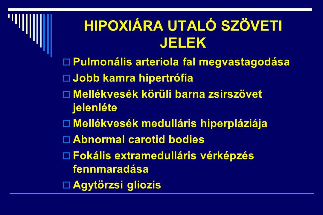 HIPOXIÁRA UTALÓ SZÖVETI JELEK  Pulmonális arteriola fal megvastagodása  Jobb kamra hipertrófia  Mellékvesék körüli barna zsirszövet jelenléte  Mellékvesék medulláris hiperpláziája  Abnormal carotid bodies  Fokális extramedulláris vérképzés fennmaradása  Agytörzsi gliozis