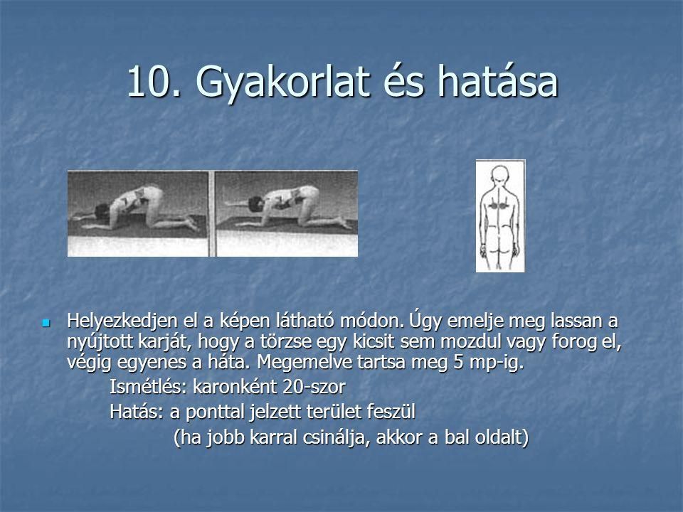 10. Gyakorlat és hatása  Helyezkedjen el a képen látható módon. Úgy emelje meg lassan a nyújtott karját, hogy a törzse egy kicsit sem mozdul vagy for