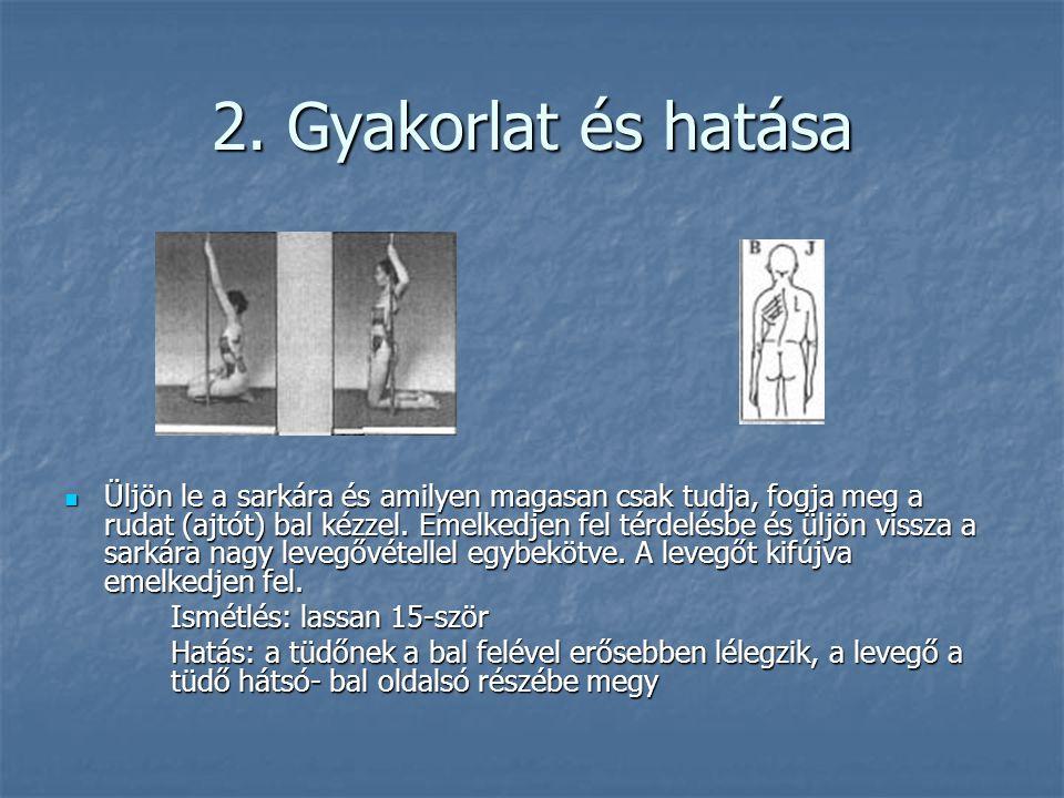 2. Gyakorlat és hatása  Üljön le a sarkára és amilyen magasan csak tudja, fogja meg a rudat (ajtót) bal kézzel. Emelkedjen fel térdelésbe és üljön vi
