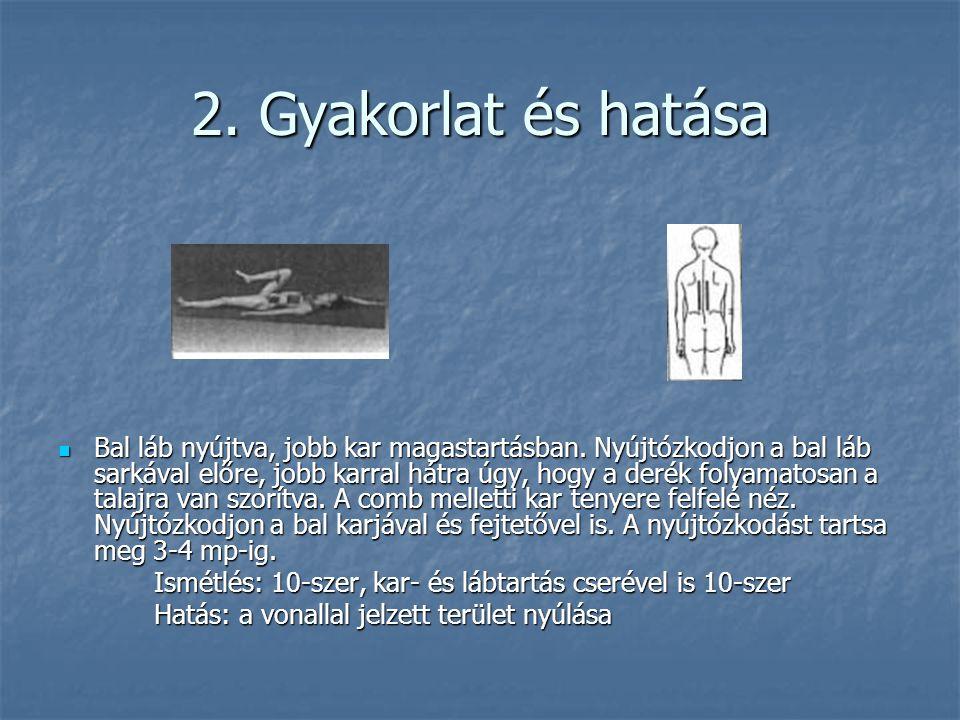 2. Gyakorlat és hatása  Bal láb nyújtva, jobb kar magastartásban. Nyújtózkodjon a bal láb sarkával előre, jobb karral hátra úgy, hogy a derék folyama