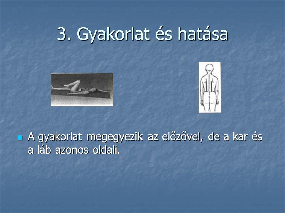 3. Gyakorlat és hatása  A gyakorlat megegyezik az előzővel, de a kar és a láb azonos oldali.