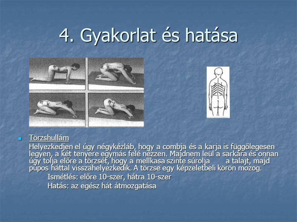 4. Gyakorlat és hatása  Törzshullám Helyezkedjen el úgy négykézláb, hogy a combja és a karja is függőlegesen legyen, a két tenyere egymás felé nézzen
