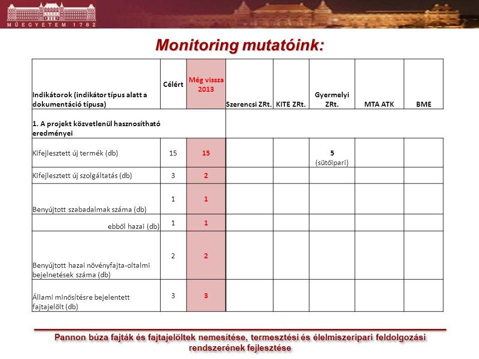 Monitoring mutatóink: Indikátorok (indikátor típus alatt a dokumentáció típusa) Célért Még vissza 2013 Szerencsi ZRt.KITE ZRt.