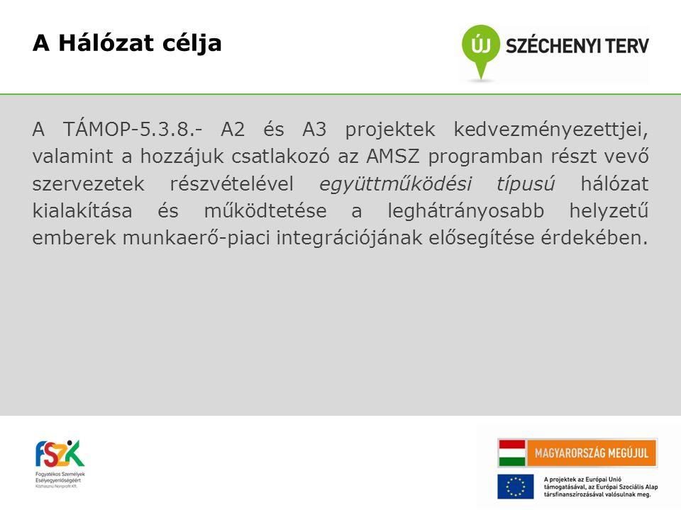 A TÁMOP-5.3.8.- A2 és A3 projektek kedvezményezettjei, valamint a hozzájuk csatlakozó az AMSZ programban részt vevő szervezetek részvételével együttmű