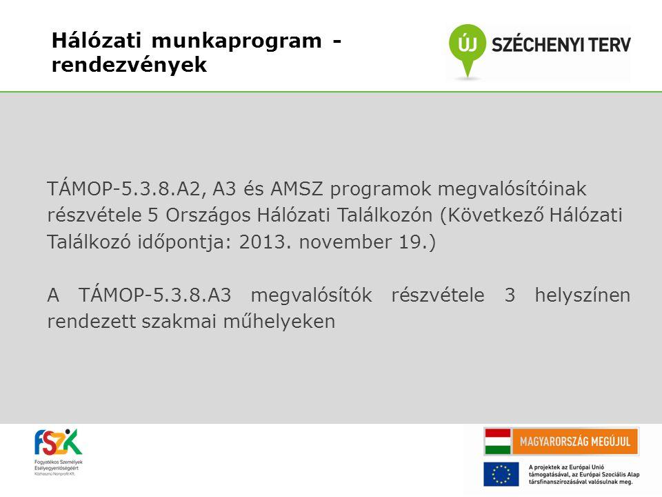 TÁMOP-5.3.8.A2, A3 és AMSZ programok megvalósítóinak részvétele 5 Országos Hálózati Találkozón (Következő Hálózati Találkozó időpontja: 2013. november