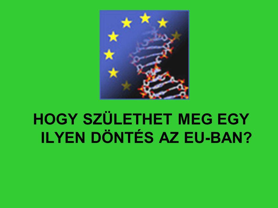 HOGY SZÜLETHET MEG EGY ILYEN DÖNTÉS AZ EU-BAN?