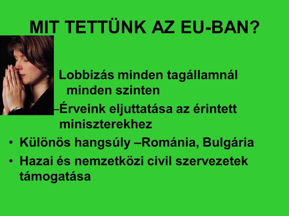 MIT TETTÜNK AZ EU-BAN? • Lobbizás minden tagállamnál minden szinten –Érveink eljuttatása az érintett miniszterekhez •Különös hangsúly –Románia, Bulgár