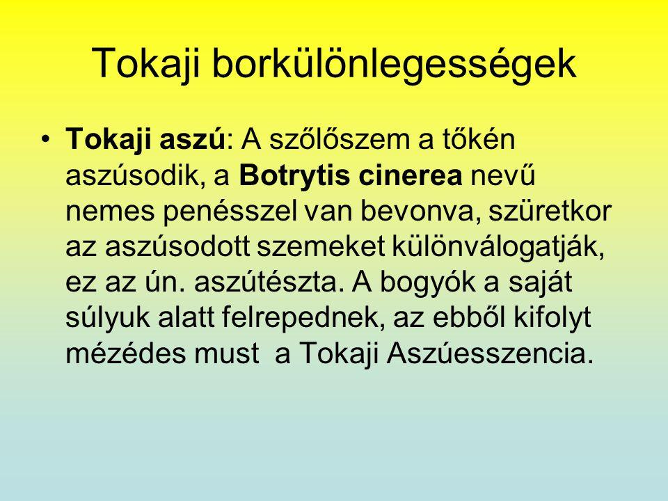 Tokaji borkülönlegességek •Tokaji aszú: A szőlőszem a tőkén aszúsodik, a Botrytis cinerea nevű nemes penésszel van bevonva, szüretkor az aszúsodott sz