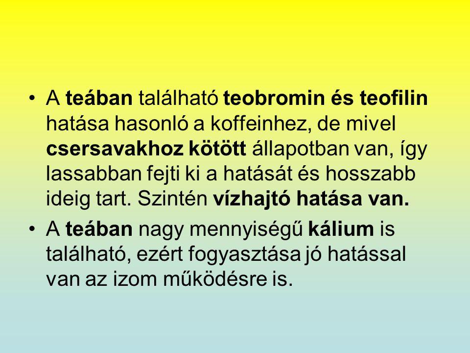 •A teában található teobromin és teofilin hatása hasonló a koffeinhez, de mivel csersavakhoz kötött állapotban van, így lassabban fejti ki a hatását é