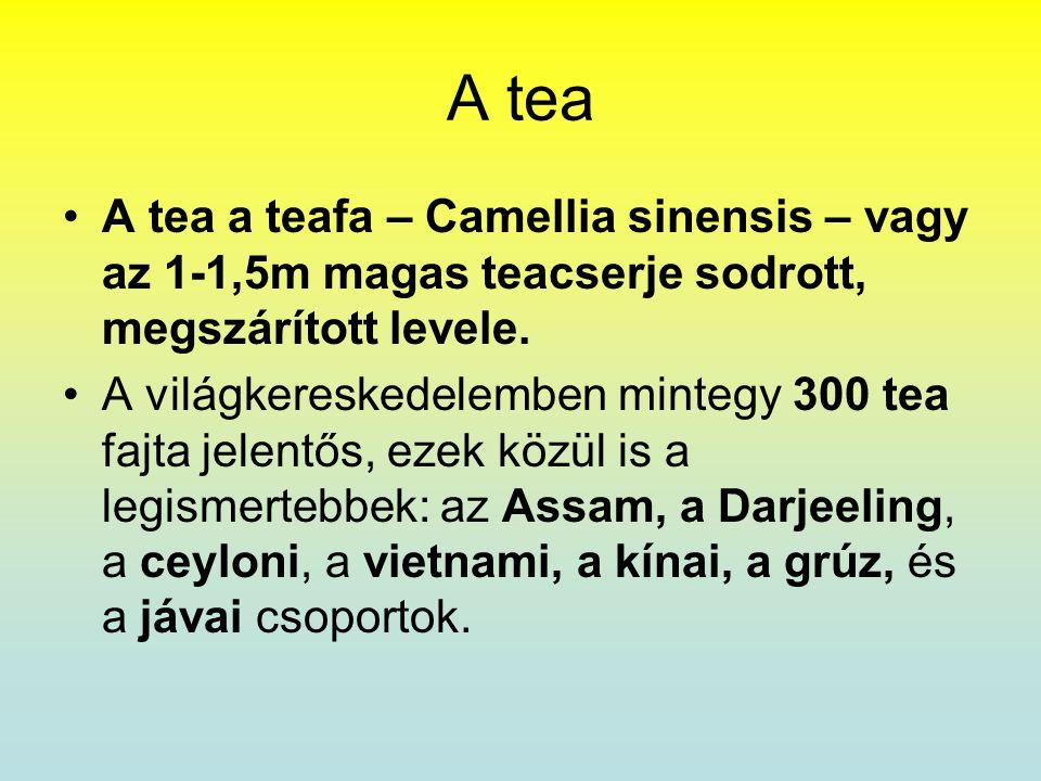 A tea •A tea a teafa – Camellia sinensis – vagy az 1-1,5m magas teacserje sodrott, megszárított levele. •A világkereskedelemben mintegy 300 tea fajta