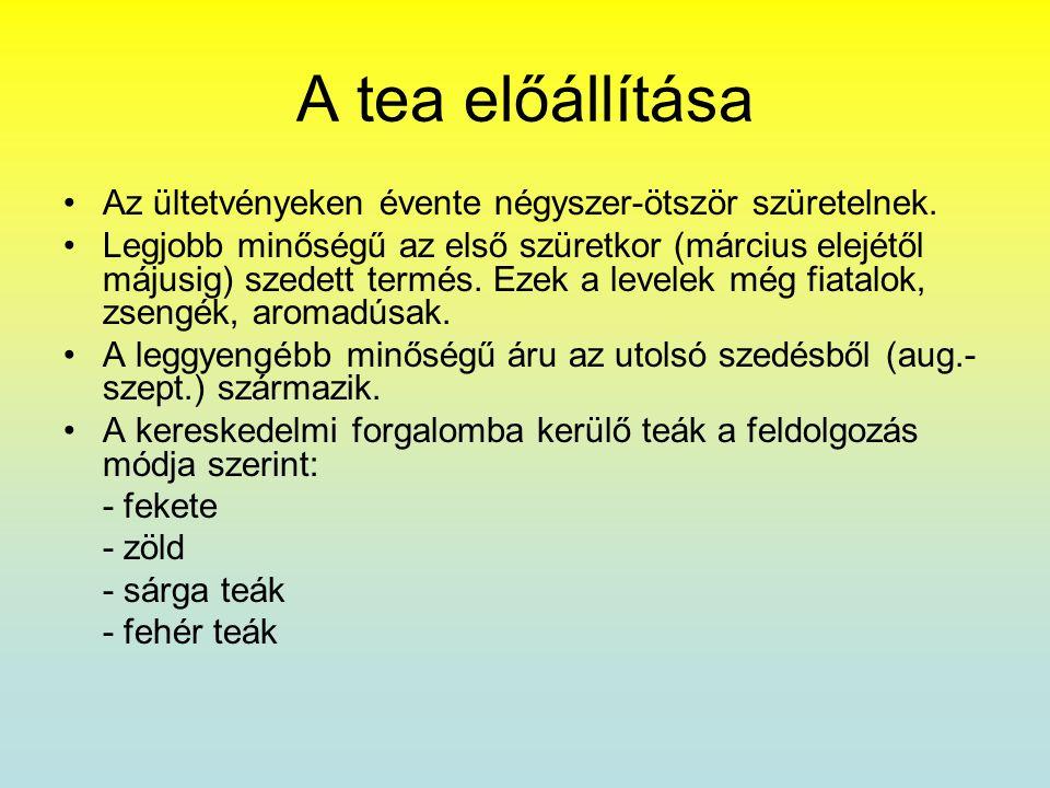 A tea előállítása •Az ültetvényeken évente négyszer-ötször szüretelnek. •Legjobb minőségű az első szüretkor (március elejétől májusig) szedett termés.