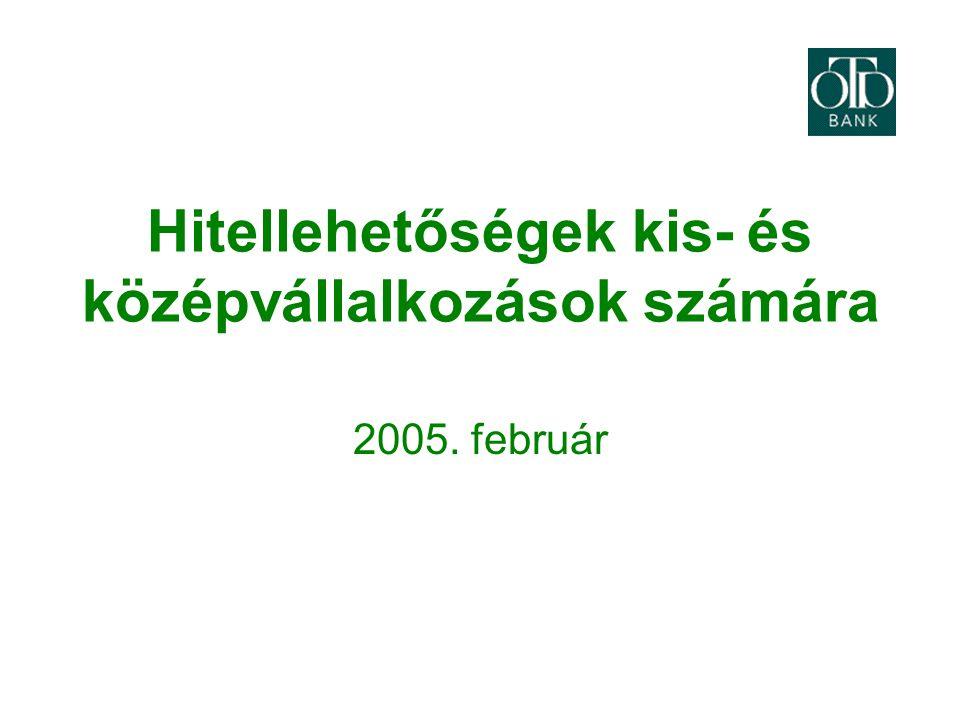Hitellehetőségek kis- és középvállalkozások számára 2005. február