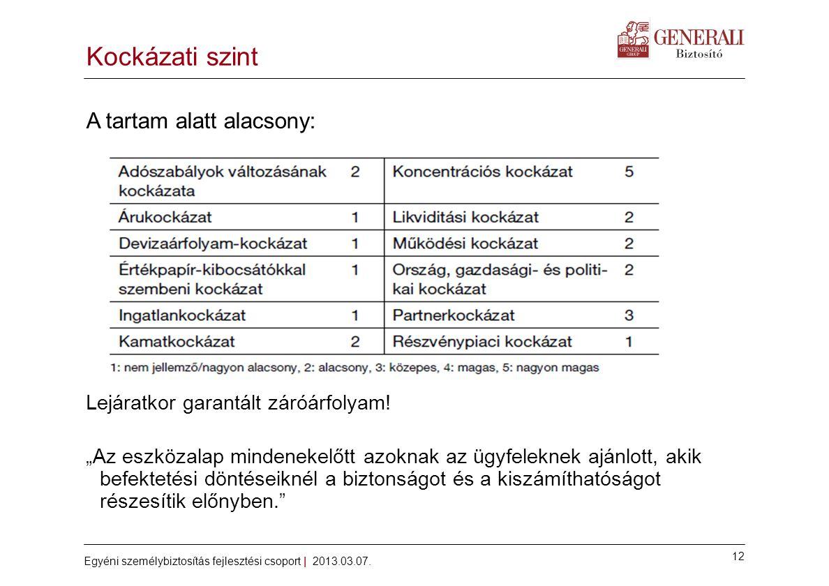 12 Egyéni személybiztosítás fejlesztési csoport | 2013.03.07.