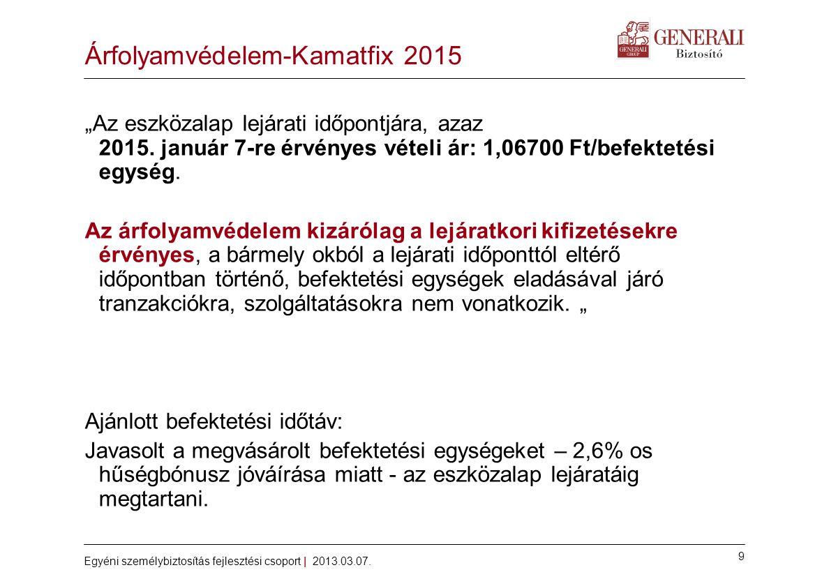 9 Egyéni személybiztosítás fejlesztési csoport | 2013.03.07.