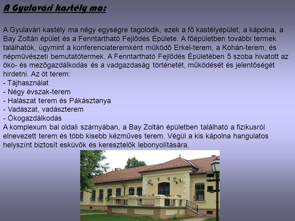 A Gyulavári kastély ma: A Gyulavári kastély ma négy egységre tagolódik, ezek a fő kastélyépület, a kápolna, a Bay Zoltán épület és a Fenntartható Fejl