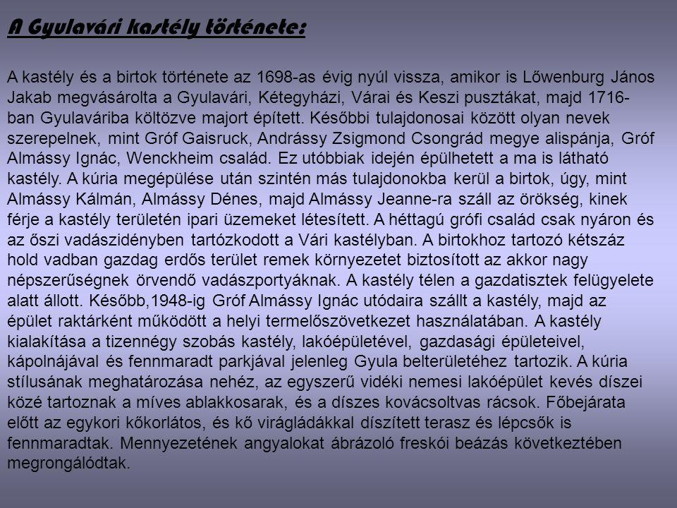 A Gyulavári kastély története: A kastély és a birtok története az 1698-as évig nyúl vissza, amikor is Lőwenburg János Jakab megvásárolta a Gyulavári,