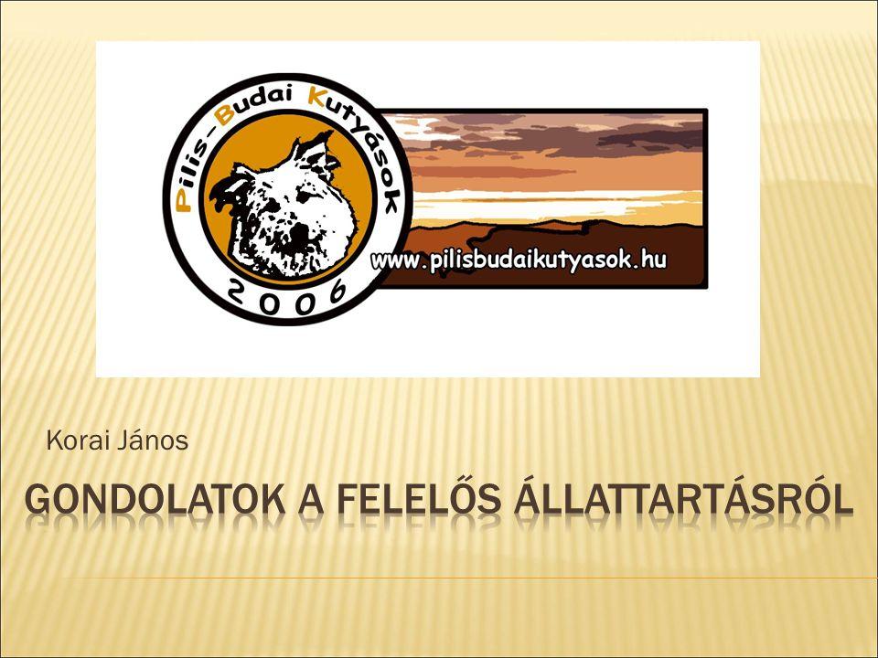 Néhány szó rólunk  A PILIS-BUDAI KUTYAMENTŐ TÁRSASÁG  Solymár, Nagykovácsi, Üröm határa, Külső Óbuda, Pesthidegkút,Pilisszentiván, Pilisvörösvár, Piliscsaba, Pilisjászfalu, Pilisborosjenő, Csobánka, Tinnye, Úny  A társaság 2006.