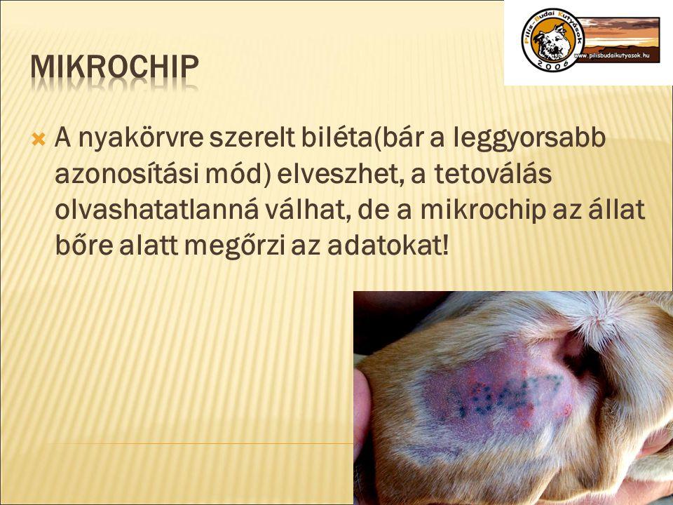  A nyakörvre szerelt biléta(bár a leggyorsabb azonosítási mód) elveszhet, a tetoválás olvashatatlanná válhat, de a mikrochip az állat bőre alatt megő