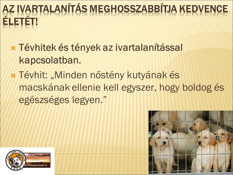""" Tévhitek és tények az ivartalanítással kapcsolatban.  Tévhit: """"Minden nőstény kutyának és macskának ellenie kell egyszer, hogy boldog és egészséges"""