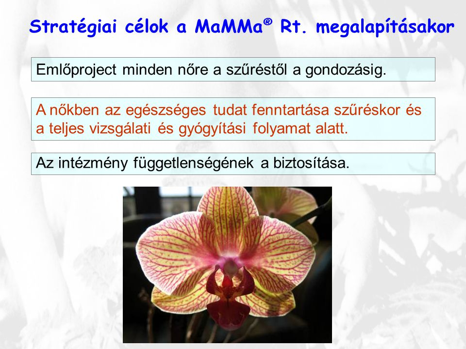 Stratégiai célok a MaMMa ® Rt. megalapításakor Emlőproject minden nőre a szűréstől a gondozásig. A nőkben az egészséges tudat fenntartása szűréskor és
