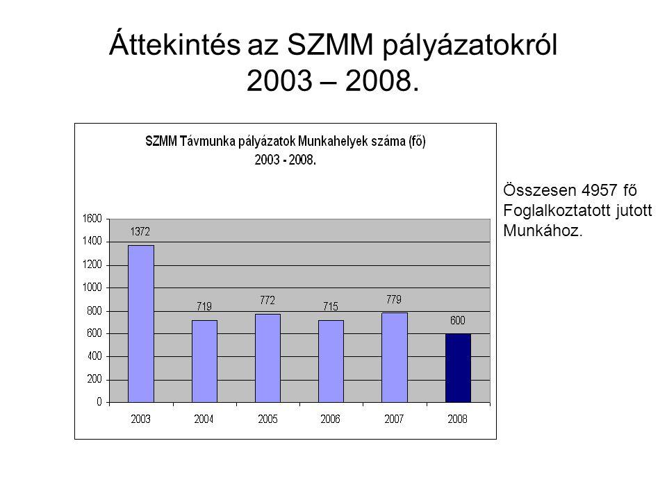 Pályázatok regionális intenzitása SZMM TP20072008 KSH Régiók Távmunka Pályázati intenzitás a régiókban lévő vállalkozásoknál Régió Nyertes pályázók száma Vállalkozások száma 2007 (%)*1000 2008 (%)*1000 2007 (%)2008 (%) Közép- magyarország 5876 271 965 21,3262727,944770,021330,02794 Közép-Dunántúl44 72 161 5,54316 0,00554 Nyugat-Dunántúl112 69 592 15,806412,873890,015810,00287 Dél-Dunántúl41 60 432 6,619011,654750,006620,00165 Észak- Magyarország 710 61 696 11,3459516,208510,011350,01621 Észak-Alföld4618 81 515 56,4313322,081830,056430,02208 Dél-Alföld227 80 785 27,232788,664970,027230,00866 Összesen:152118 698 146 21,7719516,901910,021770,01690