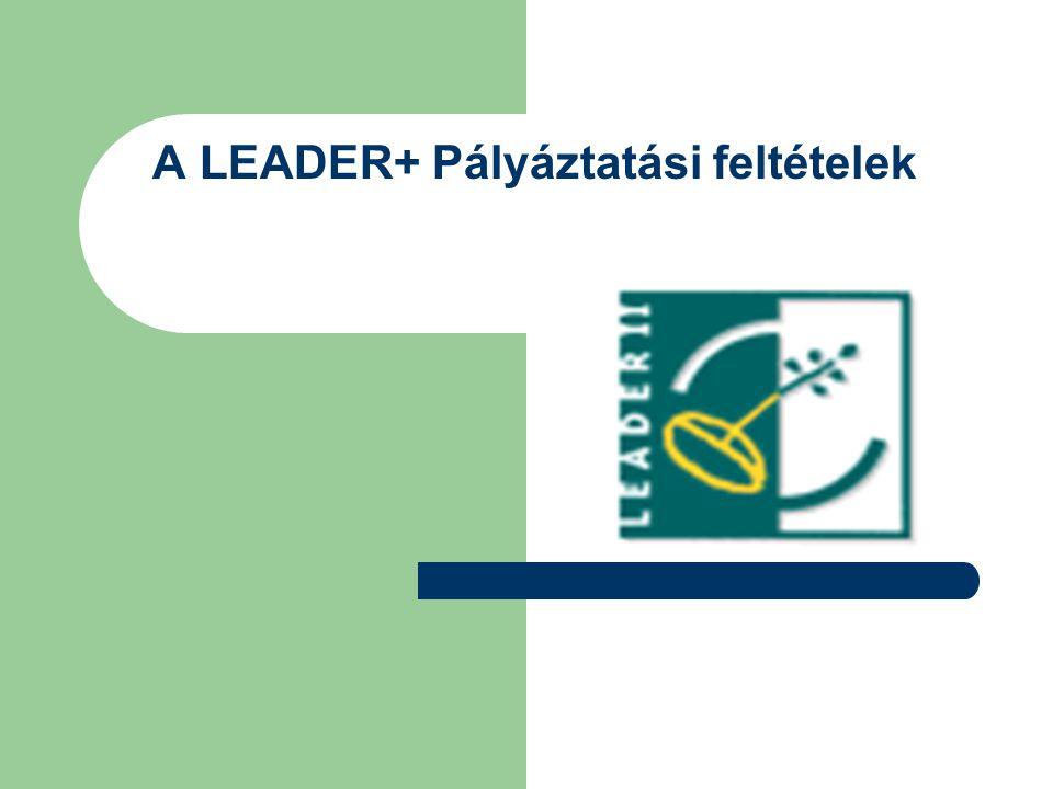 A LEADER+ Pályáztatási feltételek