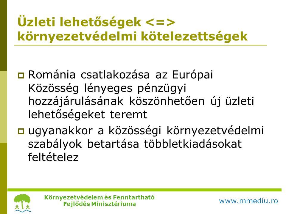 Üzleti lehetőségek környezetvédelmi kötelezettségek  Románia csatlakozása az Európai Közösség lényeges pénzügyi hozzájárulásának köszönhetően új üzle